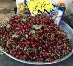 Albaloo/sour cherries ,, used to eat      them by handful with salt (( hang em from my ears t like ear rings )) every time my mom bought em to make rice  or jam & sharbat ( strained jam syrup mixed with ice water ) ,, people used to welcome their guest with this drink during hot summer days & nites t ,, the farm fresh produce next to los altos Tjoes usually brings around may/june  ,,  mexican & persian stores too & felipe's market by la miche in sunnyvale