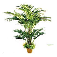 TCB-07 330CM Artificial Areca Palm Small Palm Trees, Small Palms, Plants, Plant, Planets