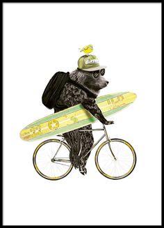 Schattige poster met fietsende beer