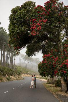 Signal Hill, Cape Town, Sidewalk, Country Roads, Nature, Inspiration, Biblical Inspiration, Naturaleza