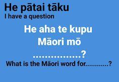 School Resources, Classroom Resources, Teaching Resources, Maori Words, Maori Tribe, 6 Class, Childhood Education, Archetypes, Child Development