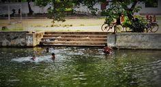 Ann Fernandez Photography © #amnnfernandezphotography #India #Kerela #Cochin