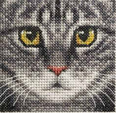 Grey-TABBY-CAT-KITTEN-Detailed-Face-Full-counted-cross-stitch-kit and like OMG! get some yourself some pawtastic adorable cat apparel! Cat Cross Stitches, Counted Cross Stitch Patterns, Cross Stitch Charts, Cross Stitch Designs, Cross Stitching, Cross Stitch Embroidery, Grey Tabby Cats, Tabby Kittens, Cross Stitch Animals