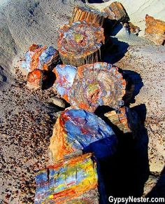 Bucket list item: Visit the Petrified Forest National Park in Arizona – beautiful! See more: www.c… Bucket list item: Visit the Petrified Forest National Park in Arizona – beautiful! See more: www. Petrified Forest National Park, National Forest, Theme Color, Petrified Wood, Parcs, Rocks And Gems, Rocks And Minerals, Natural Wonders, Amazing Nature