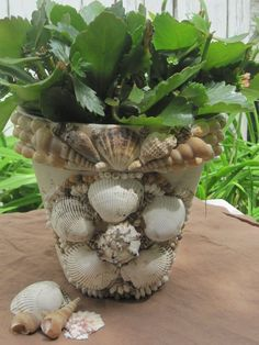 Seashell encrusted clay pot... looks like a million, cost pennies - paint clay pot, glue on assorted shell - can purchase bags of shells from your dollar store