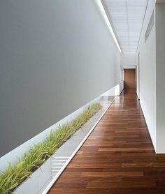 FF House! Jalisco, Mexico Designed by Hernandez Silva Arquitectos. #elegantlife insta