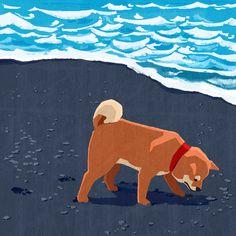 won hye min Japanese Dog Breeds, Japanese Dogs, Shiba Inu, Hachiko Dog, Animal Drawings, Art Drawings, Chibi Dog, Corgi Drawing, Posca Art