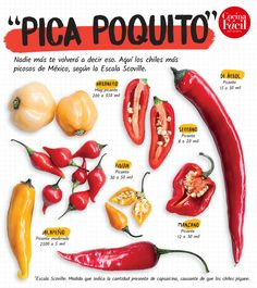 Authentic Mexican Recipes, Mexican Food Recipes, Healthy Recipes, Allo Pizza, Food C, Good Food, Traditional Mexican Food, Mexican Kitchens, Dried Peppers