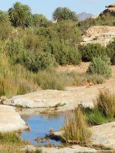 L'Oued Erguenoun