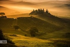 The Golden Heart of Tuscany by Pasquale Di Pilato on 500px