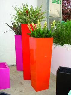 Flare planters used in a variety of sizes and colours to create a focus piece within any room. Patio Plants, Garden Planters, Planter Pots, Container Plants, Container Gardening, Morrocan Decor, Indoor Trees, Decorative Planters, Natural Home Decor