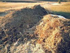 Composting Horse Manure