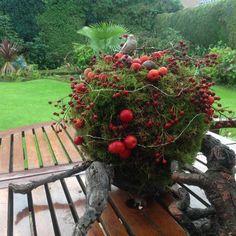 Herfstbol, piepschuimbol bekleed met mos , appeltjes en rozenbottels