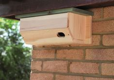 The RSPB's solid wood Swift Nestbox
