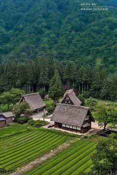 里山 Satoyama scenery - Old Thatched Houses in Nanto, Toyama, Japan Traditional Japanese House, Thatched House, Toyama, Go To Japan, Farm Stay, Japan Photo, Japanese Architecture, Japanese Culture, Great View
