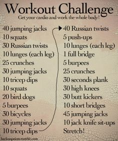 Workout Challenge- Cardio and Whole Body