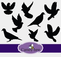 Dove Silhouettes Clip art,Clip art Bird Silhouettes  Instant digital Download clip art. Commercial or Personal Use -345 by CandyBeeDesigns on Etsy
