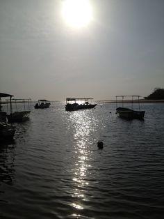 Tamarindo Estuary, Tamarindo, Costa Rica