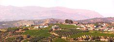 Tuscany in Greece, Really! Pendamodi, Crete