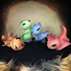 """Mini group photoshoot! ✨ All my baby dragons together! ❤️ Hoping to take better photos later but for now I'm finally done! Yay~! """