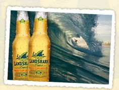 LandShark Lager -- My FAVORITE go to Summer beer. I like dressing this one and many people think that ruins it; Shark Mermaid, Beer Of The Month, San Jose Sharks, Going Insane, Shark Week, Long Weekend, South Beach, Beach Themes, Key West