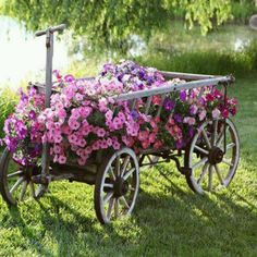 Antique wagon to display on my dream property