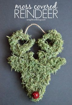 Happy Holidays: DIY Moss Covered Reindeer by A Night Owl for Tatertots and Jello #DIY #Christmas