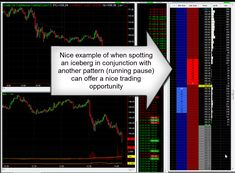Tape Reading Trader Program Course - The Daytrading Room