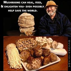 Dr. Paul Stamets discusses how he used Turkey Tail mushroom to help heal his mother from stage 4 cancer, and much more. The 'forbidden fruit' of medicinal mushrooms: http://edition.cnn.com/2012/02/02/health/tedmed-mushroom-man/index.html