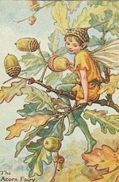 Fairy The Acorn Fairy, by (CMB) Cicely Mary Barker, 1935