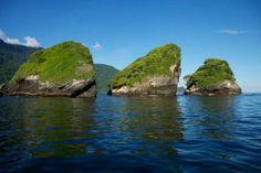 Estas 3 rocas tupidas de árboles asombran en la mitad del mar de Paria