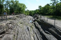 The solid limestone glacial grooves of northern Kelleys Island, OH are the largest accessible grooves in the world with fossils aging from 350-400 million years old. The National Natural Landmark is 400-feet long, 35-feet wide, and 15-feet deep. Visitors can view the grooves from a walkway or stairs.