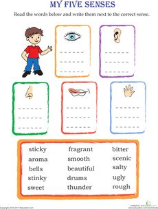 How can I start a descriptive essay on an object using the 5 senses?