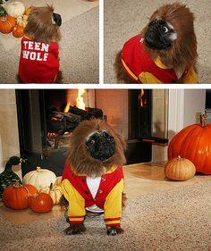 Teen Wolf... oh my gosh!