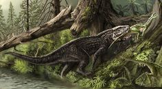 Postosuchus, a carnivorous archosaur from the late triassic. It's a relative of crocodiles but resembles a dinosaur more.