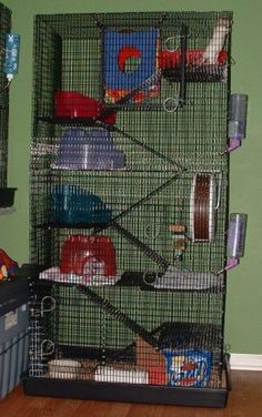Rats In The House : Keeping Fancy Rats The RUUD Cage (R-699) from Martin's Cages