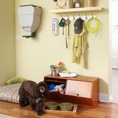 Create a Doggie Nook. Your dog deserves a tidy territory. Carve out a corner that gives your pooch something worth woofing about.