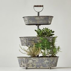 Creative Co-Op Secret Garden Metal Bucket Tiered Stand with Wood Handle
