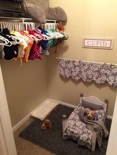 Puppy room - This Dog Mom Turned Her Spare Closet into an Adorable Bedroom for Her Pooch Animal Room, Dog Bedroom, Closet Bedroom, Bedroom Ideas, Puppy Room, Dog Spaces, Niches, Dog Furniture, Furniture Dolly