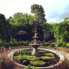 #JardinBotanico #Prado #Montevideo #Uruguay #ViajerosUY