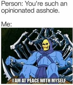 Skeletor from He-Man Intp Personality Type, Myers Briggs Personality Types, Intj Women, Intj Intp, Introvert, Myers Briggs Personalities, Fandoms, In This World, Funny Memes