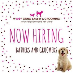We are hiring a full-time groomer. Please e-mail your resume to deland@woofgangbakery.com. #WGB #DeLand #Florida