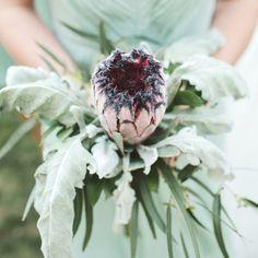 Ulmer Studios/Historic Cedarwood via Green Wedding Shoes | protea wedding bouquets #wedding #protea