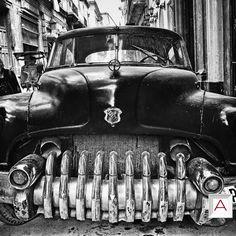 "Meet  #hippo from #JanSchoof #Havana #photographycollection ""Part of the Havana #Heretoforever?"" Grab your #fineartprint edition copy @   #Havana #Cuba #Hippo #Artphotography #artphotographer #limitededitionprints #artailer"