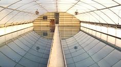 Tobacco greenhouse ready to seed
