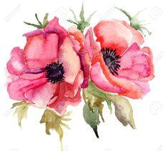 poppy seed flower handpaintad - Buscar con Google