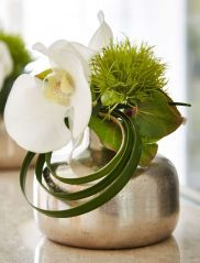 Orchid and Dianthus In A Silver Vase