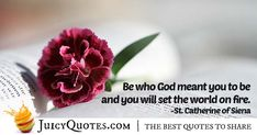 """""""Be who God meant you to be and you will set the world on fire. Catherine of Siena Christianity Quotes, World On Fire, Quotes About God, Siena, Picture Quotes, Best Quotes, Best Quotes Ever, Christian Quotes"""