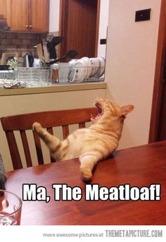 Ma, Meatloaf..what is she doing...I never know whats shes doing back there....#wedding crashers