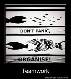 Learn to work together and get success! #business #teamwork #success